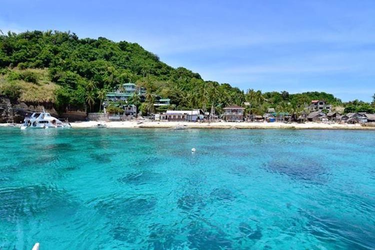 Apo Island Diving Dive Sites Locations Amp Resort Liquid